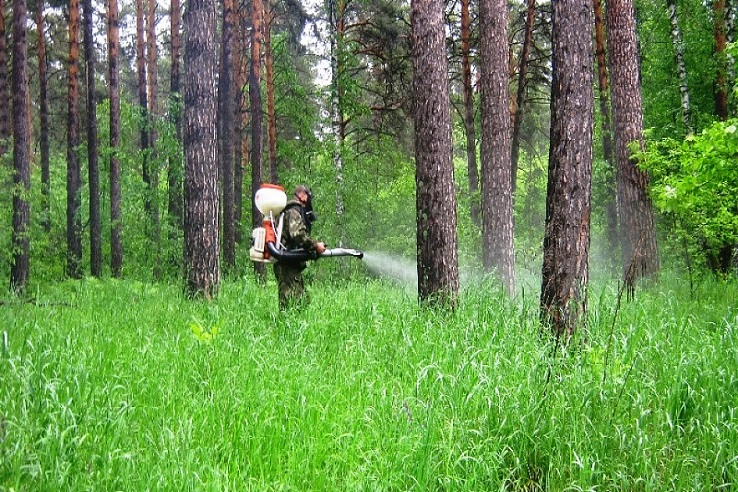 Обработка от клещей лесных массивов в Набережных Челнах
